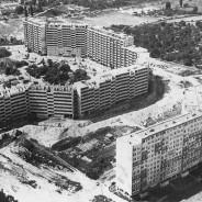 Historia Gaju