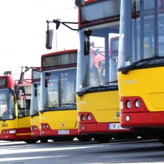 Autobusy powrócą na Armii Krajowej!