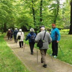 Rusza sezon Nordic Walking na Gaju!