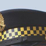 Dyżur Straży Miejskiej w Radzie Osiedla Gaj